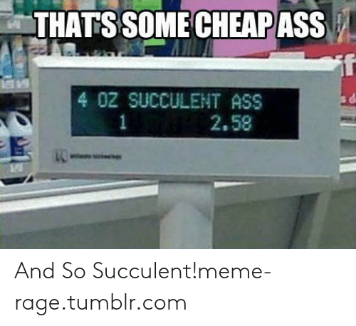meme: THATS SOME CHEAP ASS  GABL  4 0Z SUCCULENT ASS  2.58 And So Succulent!meme-rage.tumblr.com