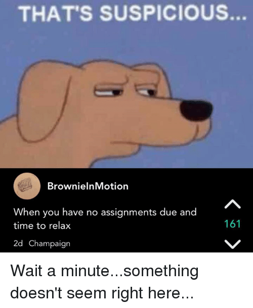Memes, Time, and Waiting...: THAT'S SUSPICIOUS.  Brownie InMotion  When you have no assignments due and  161  time to relax  2d Champaign Wait a minute...something doesn't seem right here...