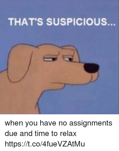 Thats Suspicious: THAT'S SUSPICIOUS. when you have no assignments due and time to relax https://t.co/4fueVZAtMu