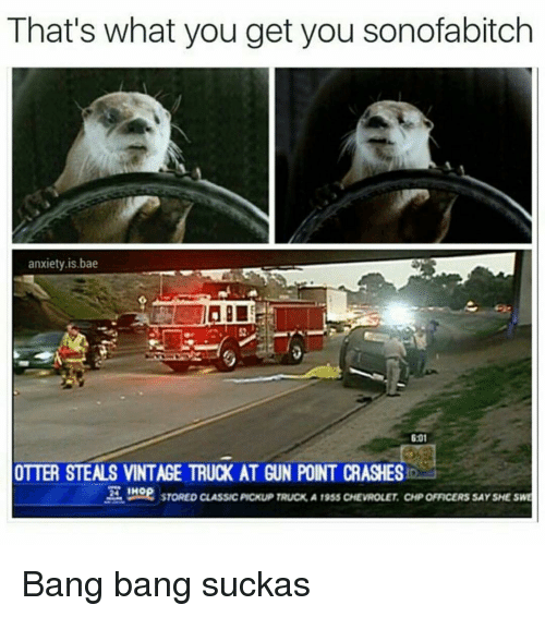 Sucka: That's what you get you sonofabitch  anxiety is bae  6:01  OTTER STEALS VINTAGE TRUCK AT GUN POINT CRASHES  mOR STORED cLAssuc Pickup TRucK A 19sss CHEVROLET CHPOFFICERSSAYSHE SME Bang bang suckas