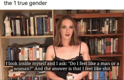 """ora: the 1 true gender  Ilook inside myself and I ask: """"Do I feel like a man ora  woman?"""" And the answer is that I feel like shit."""