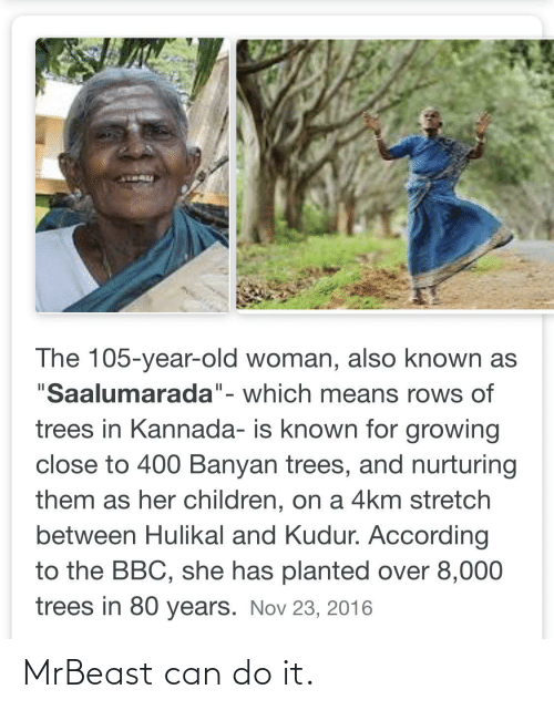 "kannada: The 105-year-old woman, also known as  ""Saalumarada""- which means rows of  II  trees in Kannada- is known for growing  close to 400 Banyan trees, and nurturing  them as her children, on a 4km stretch  between Hulikal and Kudur. According  to the BBC, she has planted over 8,000  trees in 80 years. Nov 23, 2016 MrBeast can do it."