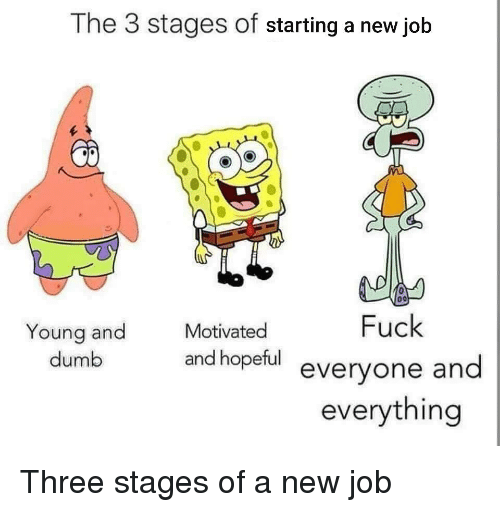 Starting A New Job: The 3 stages of starting a new job  Motivated  Fuck  Young and  dumb  and hopeful evervone and  everything