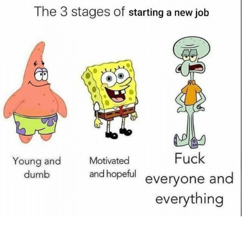 Starting A New Job: The 3 stages of starting a new job  Motivated  Fuck  Young and  dumb  and hopeful everyone and  everything