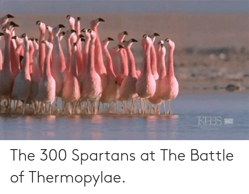 spartans: The 300 Spartans at The Battle of Thermopylae.
