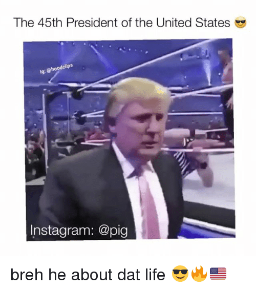 Memes, 🤖, and United States: The 45th President of the United States  lg: hoodclips  Instagram: @pig breh he about dat life 😎🔥🇺🇸