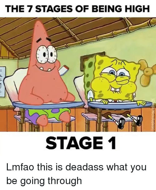 Funny, High, and This Is: THE 7 STAGES OF BEING HIGH  STAGE 1 Lmfao this is deadass what you be going through
