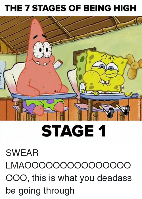 Funny, High, and This Is: THE 7 STAGES OF BEING HIGH  STAGE 1 SWEAR LMAOOOOOOOOOOOOOOOOOO, this is what you deadass be going through