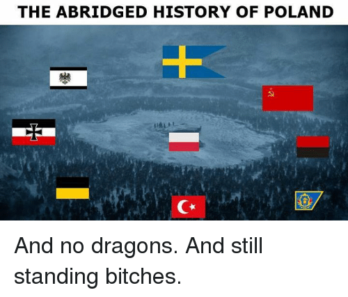 Memes, History, and Poland: THE ABRIDGED HISTORY OF POLAND And no dragons.  And still standing bitches.