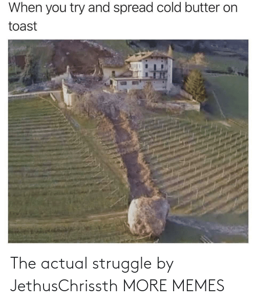 Struggle: The actual struggle by JethusChrissth MORE MEMES
