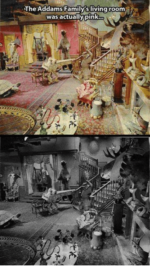 addams family: The Addams Family's living room  i  was actually pink