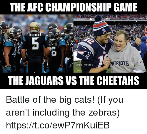 Afc Championship: THE AFC CHAMPIONSHIP GAME  BORTLES  6 o  @NFL MEMES  THE JAGUARS VS THE CHEETAHS Battle of the big cats! (If you aren't including the zebras) https://t.co/ewP7mKuiEB