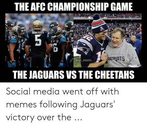 Pats Memes: THE AFC CHAMPIONSHIP GAME  BORTLES  PATRIOTS  @NFL MEMES  THE JAGUARS VS THE CHEETAHS Social media went off with memes following Jaguars' victory over the ...