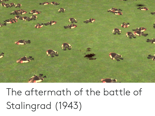aftermath: The aftermath of the battle of Stalingrad (1943)