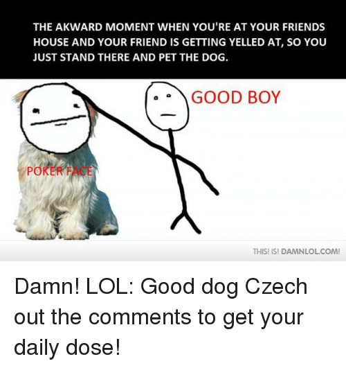 Friends, Lol, and Memes: THE AKWARD MOMENT WHEN YOU'RE AT YOUR FRIENDS  HOUSE AND YOUR FRIEND IS GETTING YELLED AT, SO YOU  JUST STAND THERE AND PET THE DOG.  GOOD BOY  POKE  THIS! ISI DAMNLOLCOM! Damn! LOL: Good dog  Czech out the comments to get your daily dose!