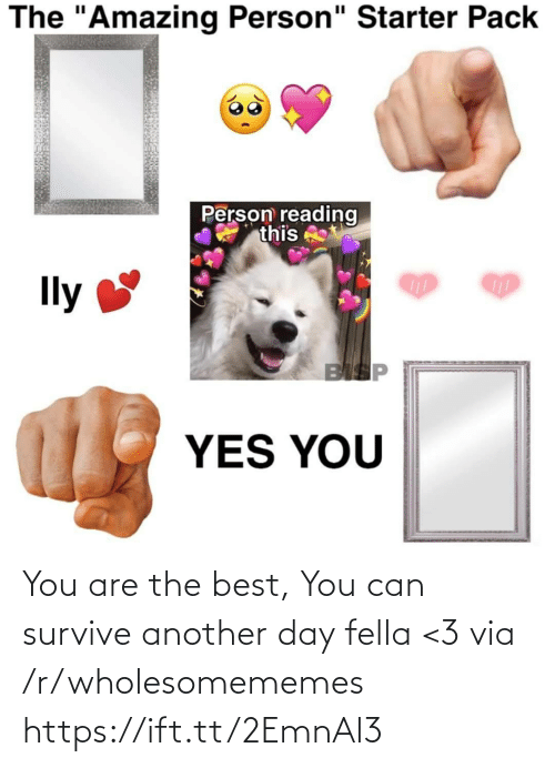 "Starter Pack: The ""Amazing Person"" Starter Pack  Person reading  this  Ily  BISP  YES YOU You are the best, You can survive another day fella <3 via /r/wholesomememes https://ift.tt/2EmnAl3"