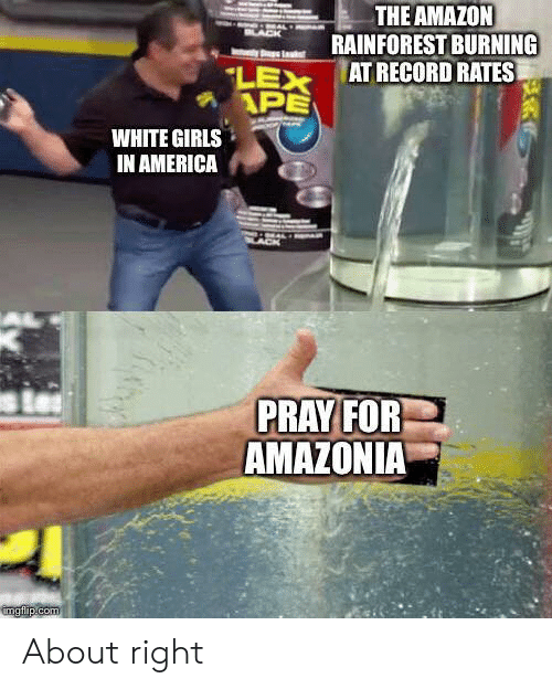 white girls: THE AMAZON  RAINFOREST BURNING  AT RECORD RATES  LACK  LEX  APE  WHITE GIRLS  IN AMERICA  PRAY FOR  AMAZONIA  imgflip.com About right