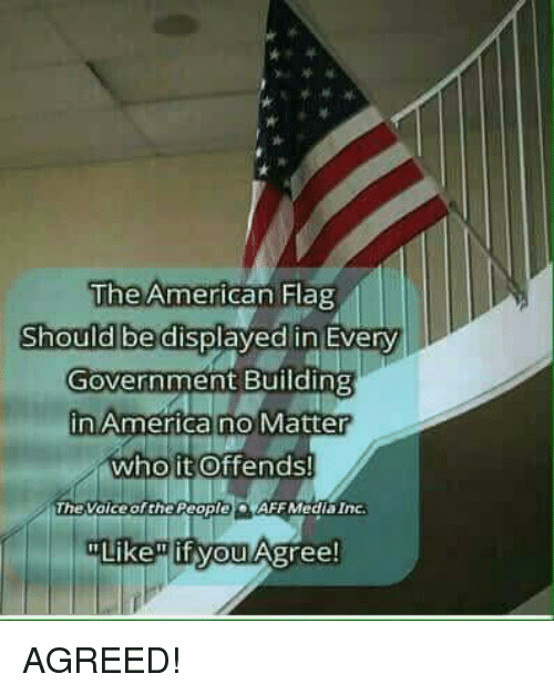 """America, Memes, and American: The American Hag  Should be displayed in Every  Government Building  in America no Matter  who it Offends!  TheVoice of the People)。(AFF Media Inc.  Like"""" if you Agree! AGREED!"""