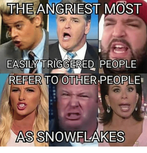 Angriest: THE ANGRIEST MOST  EASILY TRIGGERED PEOPLE  REFER TO OTHER PEOPLE  ASSNOWFLAKES