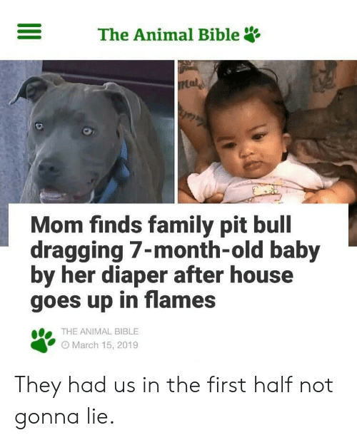 Diaper: The Animal Bible  Mom finds family pit bull  dragging 7-month-old baby  by her diaper after house  goes up in flames  THE ANIMAL BIBLE  O March 15, 2019 They had us in the first half not gonna lie.