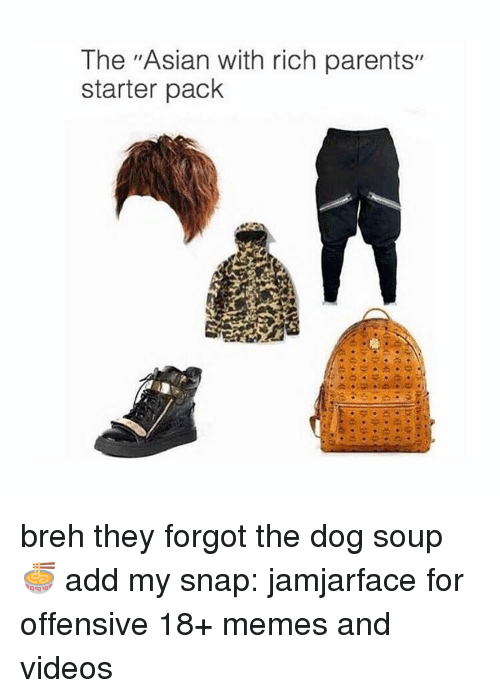 """Asian, Dogs, and Memes: The """"Asian with rich parents""""  starter pack breh they forgot the dog soup 🍜 add my snap: jamjarface for offensive 18+ memes and videos"""