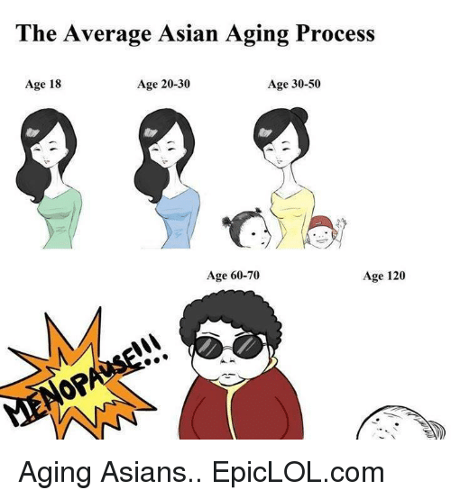 Asian: The Average Asian Aging Process  Age 20-30  Age 30-50  Age 18  Age 60-70  Age 120 Aging Asians..