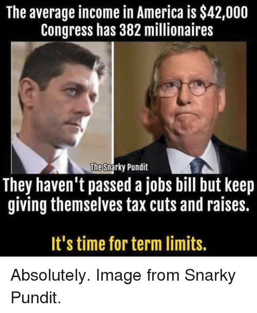 America, Memes, and Image: The average income in America is $42,000  Congress has 382 millionaires  The  Snarky Pundit  They haven't passed a jobs bill but keep  giving themselves tax cuts and raises.  It's time for term limits. Absolutely. Image from Snarky Pundit.