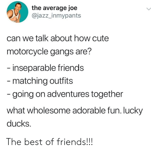 gangs: the average joe  @jazz_inmypants  can we talk about how cute  motorcycle gangs are?  inseparable friends  matching outfits  going on adventures together  what wholesome adorable fun. lucky  ducks The best of friends!!!