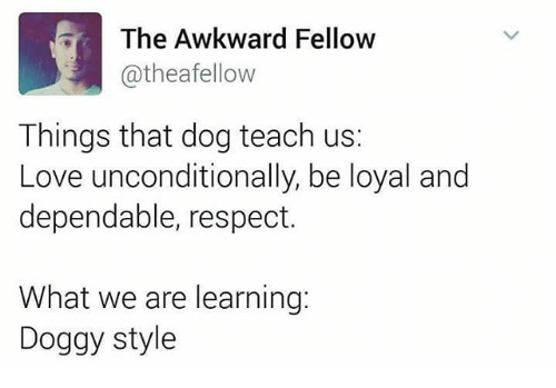 Doggy Style, Love, and Memes: The Awkward Fellow  @thea fellow  Things that dog teach us:  Love unconditionally, be loyal and  dependable, respect.  What we are learning:  Doggy style