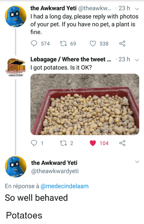 Theawkwardyeti: the Awkward Yeti @theawkw... 23 h v  I had a long day, please reply with photos  of your pet. If you have no pet, a plant is  fine.  Lebagage/Where the tweet  I got potatoes. Is it OK?  23 h v  the Awkward Yeti  @theawkwardyeti  En réponse à @medecindelaam  So well behaved Potatoes