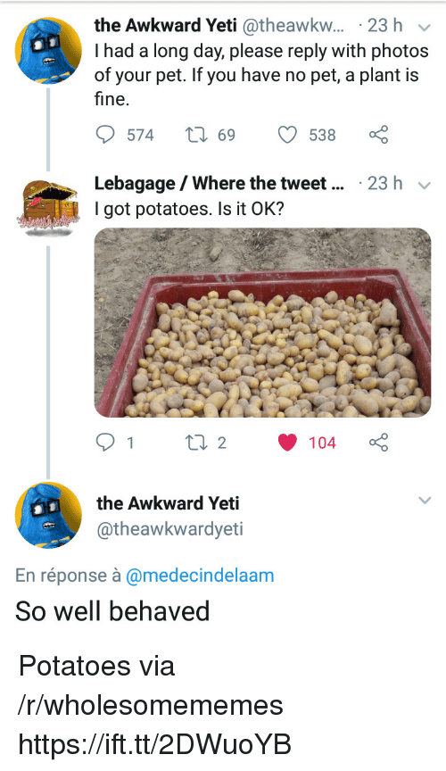 Theawkwardyeti: the Awkward Yeti @theawkw... 23 h v  I had a long day, please reply with photos  of your pet. If you have no pet, a plant is  fine.  Lebagage/Where the tweet  I got potatoes. Is it OK?  23 h v  the Awkward Yeti  @theawkwardyeti  En réponse à @medecindelaam  So well behaved Potatoes via /r/wholesomememes https://ift.tt/2DWuoYB