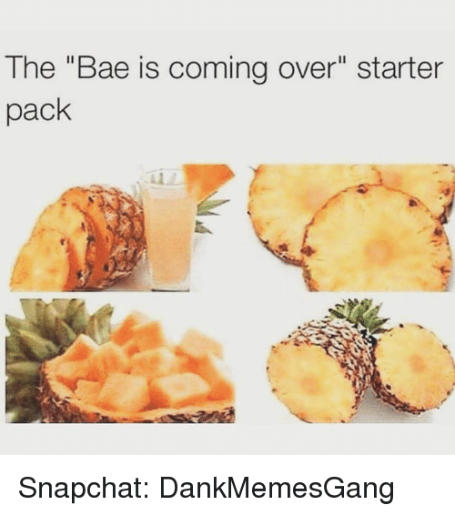"Bae, Memes, and Snapchat: The ""Bae is coming over"" starter  pack Snapchat: DankMemesGang"