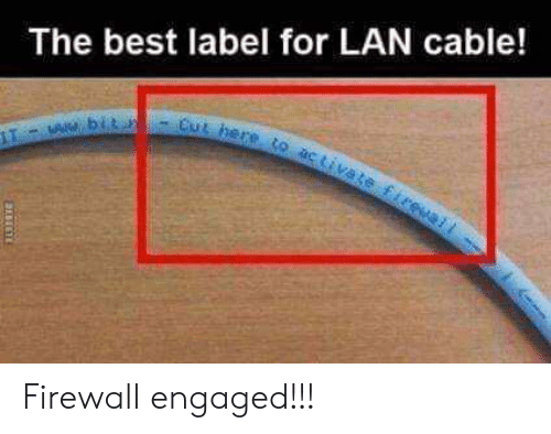 Memes, Best, and 🤖: The best label for LAN cable! Firewall engaged!!!
