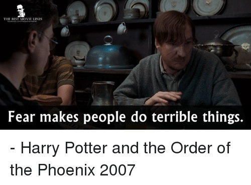 harry potter and the order of the phoenix: THE BEST MOVIE LINES  Fear makes people do terrible things. - Harry Potter and the Order of the Phoenix 2007