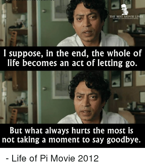The best movie lines focebookcomthebestmovielnes i suppose for Life of pi ending