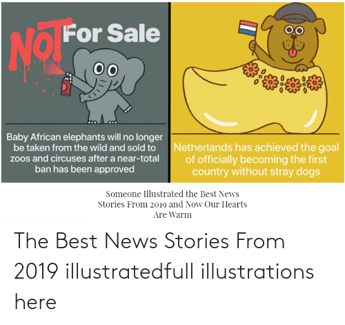 Stories:   The Best News Stories From 2019 illustratedfull illustrations here