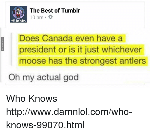 Best of Tumblr: The Best of Tumblr  10 hrs  0 hrs .  tumbl  Does Canada even have a  president or is it just whichever  moose has the strongest antlers  Oh my actual god Who Knows http://www.damnlol.com/who-knows-99070.html