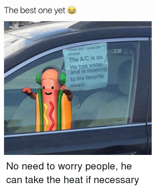 Best One Yet: The best one yet  window  The A/C is on.  He has water  and is listening  to his favorite  music No need to worry people, he can take the heat if necessary