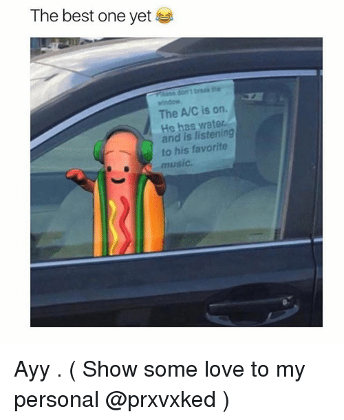 Best One Yet: The best one yet  window  The A/C is on.  He has water  and is listening  to his favorite  music Ayy . ( Show some love to my personal @prxvxked )