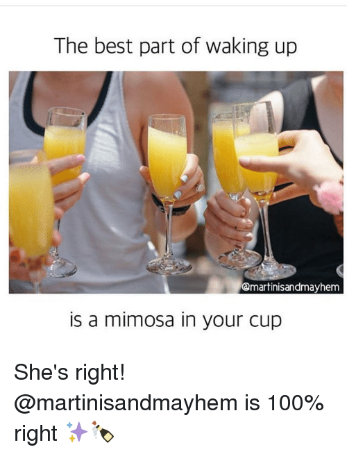 the best part of waking up qmartinisandmayhem a mimosa in