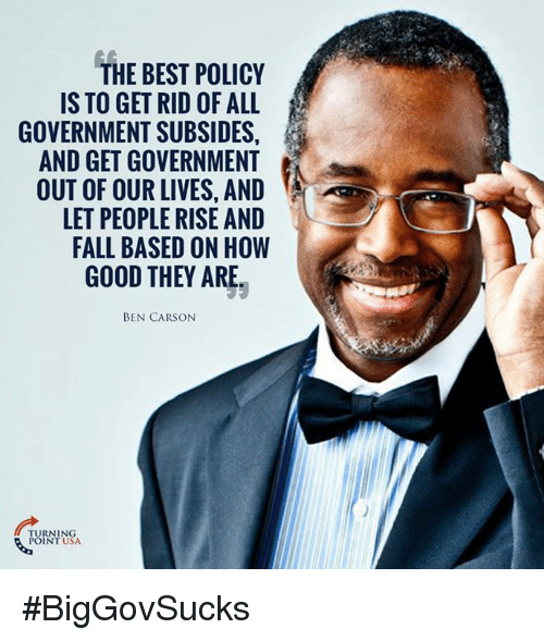 Ben Carson, Fall, and Memes: THE BEST POLICY  IS TO GET RID OF ALL  GOVERNMENT SUBSIDES,  AND GET GOVERNMENT  OUT OF OUR LIVES, AND  LET PEOPLE RISE AND  FALL BASED ON HOW  GOOD THEY ARE.  BEN CARSON  RNING  POINT USA #BigGovSucks