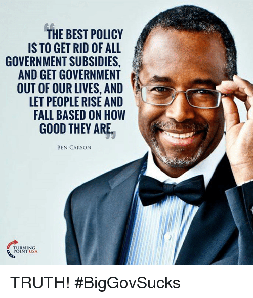 Ben Carson, Fall, and Memes: THE BEST POLICY  IS TO GET RID OF ALL  GOVERNMENT SUBSIDIES,  AND GET GOVERNMENT  OUT OF OUR LIVES, AND  LET PEOPLE RISE AND  FALL BASED ON HOW  GOOD THEY ARE.  BEN CARSON  RNING  POINT USA TRUTH! #BigGovSucks