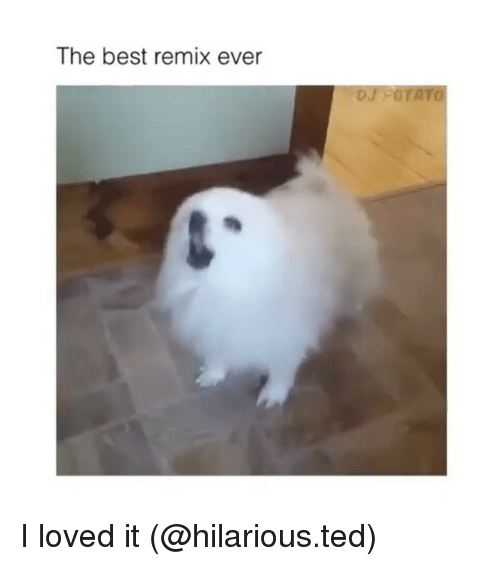 Funny, Ted, and Potato: The best remix ever  DJ POTATO I loved it (@hilarious.ted)