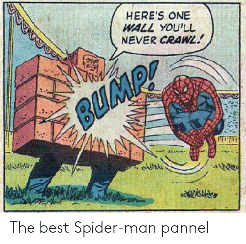 Spider: The best Spider-man pannel