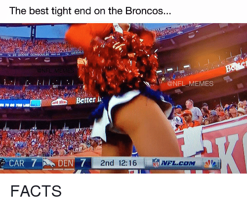 Broncos: The best tight end on the Broncos..  GERALD  NFL MEMES  CAR 7 DEN 7  2nd 12:16 FACTS