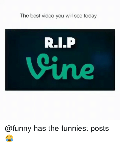 Funny, Memes, and Best: The best video you will see today  Sine @funny has the funniest posts 😂