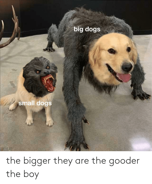 boy: the bigger they are the gooder the boy