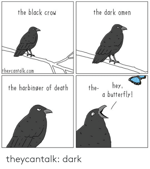 Butterfly: the black crow  the dark omen  theycantalk.com  hey  butterfly!  the harbinger of death  the- theycantalk: dark