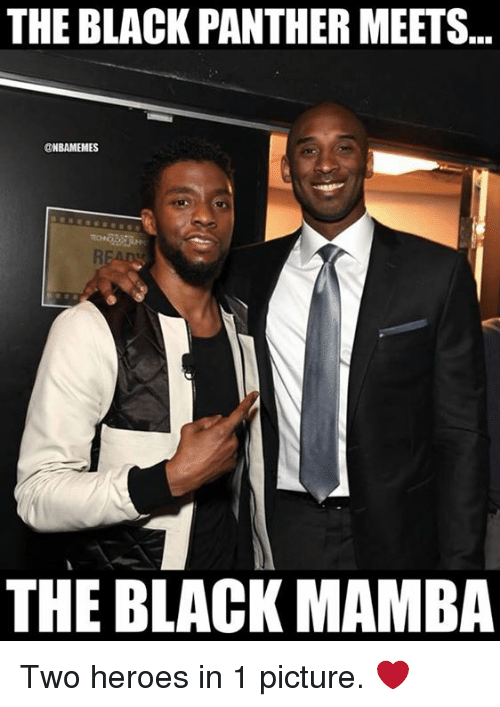 Nba, Black, and Black Panther: THE BLACK PANTHER MEETS.  @NBAMEMES  THE BLACK MAMBA Two heroes in 1 picture. ❤
