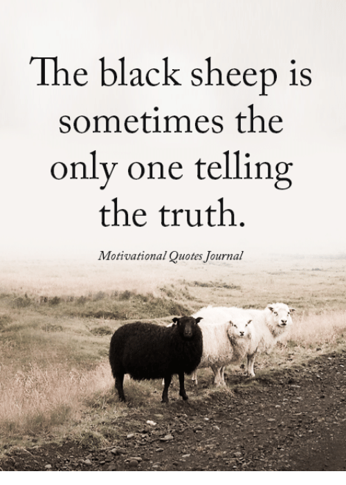 black sheep: The black sheep is  sometimes the  only one telling  the truth.  Motivational Quotes Journal